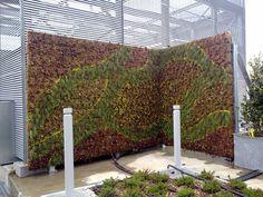 Realizzazione parete verde verticale - Milano (MI)