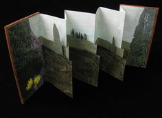 creative way to remember a favorite landscape - an leather bound, triple accordion style book