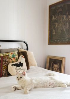 House Tour: A Vintage Luxe 1920s Queensland Cottage | Apartment Therapy