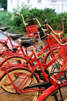 holiday club saimaa / http://www.idealista.fi/vaaleanpunainenhirsitalo/