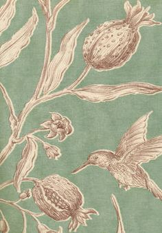 Squawk fabric and wallpaper in Chocolate/Mint colourway.Lewis  Wood.