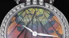 Harry Winston Premier Precious Butterfly Automatic 36mm - http://hiphopboutiques.com/blog/harry-winston-premier-precious-butterfly-automatic-36mm/