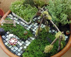 Terra Cotta Fairy Garden.....I'm gonna build one of these, but on a grander scale in an oblong metal tub!