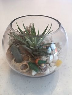 Beautiful little fishbowl terrarium by lovely customer Ms T. I. from Eastleigh