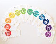 Rainbow Spectrum Monthly Stickers. Love These!