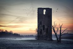 Medieval tower ruin near the German-Dutch border.....like a Vampires hiding place.... love it♥  I N S T A G R A M  L A N D S C A P E   P H O T O G R A P H Y facebook  Short time before sunrise a swarm of ravens flew on the coping to wait for the first sunrays. I noticed this behaviour several times before (not only ravens also sparrows). The birds probably frequent the vertical walls of the ruins because those areas get warmed by the sun quite fast - and crows not ravens.