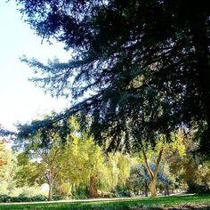 Caliparks Small Towns In California, Sacramento River, Local Parks, Seaside Towns, Park Photos, Park City, Instagram
