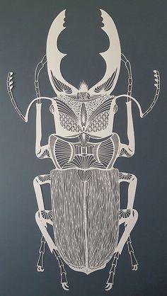 Pippa Dyrlaga, Stag beetle, 2016 © Pippa Dyrlaga.