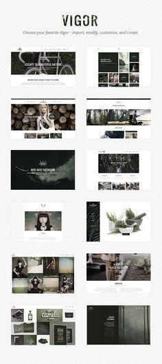 Vigor - A Fresh Multi-Concept Theme   ThemeForest