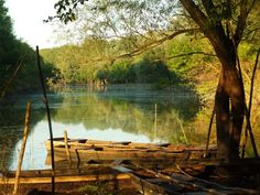 A legszebb erdők Magyarországon/Beautiful forests in Hungary Beautiful Forest, Beautiful Places, Guam, Hungary, Budapest, Architecture Art, Places To Visit, River, Forests
