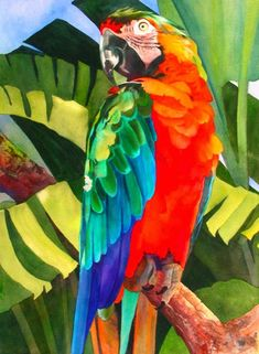 Por amor al arte: Anne Abgott Watercolor Bird, Watercolor Animals, Watercolor Paintings, Watercolors, Art And Illustration, Art Tropical, Arte Pop, Bird Art, Beautiful Paintings