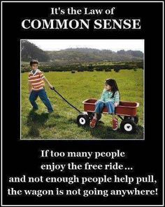 Too much ignorance, not enough common sense.