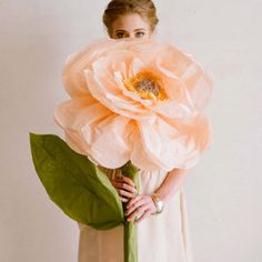 I love flowers in every way bloom your room (diy paper flower roundup) *image shown via ruche on design sponge Giant Paper Flowers, Diy Flowers, Spring Flowers, Tissue Flowers, Flower Ideas, How To Make Paper Flowers, Paper Flowers Wedding, Fake Flowers, Paper Roses