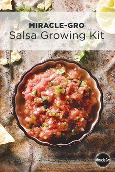 The new Miracle-Gro Salsa kit includes everything you need to start your very own salsa garden, using Miracle-Gro Moisture Control Potting Mix, Gro-ables and plant food. This is a perfect kit for new gardeners that are looking to start growing their own veggies and success is easy and guaranteed.