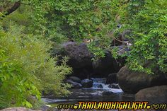 You can enjoy breathtaking views, but be prepared to get wet!, After rafting you visit a place of swimming you can relax on your own leisure at Nangrong waterfalls