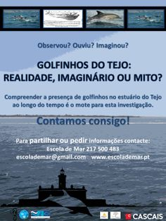 Golfinhos do Tejo | O projeto www.escolademar.pt
