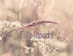 Feliz sábado de invierno en primavera y feliz fin de semana!!!