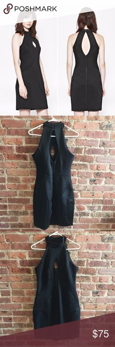 NWT French Connection Scubalicious Halter Dress 8 Black Scubalicious halter dress from French Connection, size 8. Halter style in a scuba-like material with front and back cutouts and lace panel inserts. Exposed back zip with hook closure at neck. New with tags. Size 8. French Connection Dresses Mini