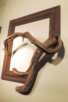 Trees fused by picture frames by Fusionframesnw