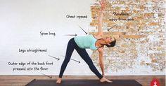 The Many Benefits of Triangle Pose (Trikonasana) -  https://yoga.com/article/the-many-benefits-of-triangle-pose