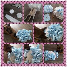 DIY dog brain games; dog enrichment activities dog food toys