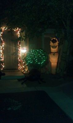 Outside our home.... Guarded by scooby