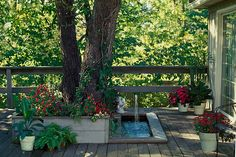 Tree and fountain in wooden deck. Looks like my front porch....I still need a fountain though.