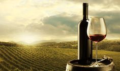 Top wineries to visit on a Mudgee weekend | Live Last Minute