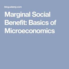 Marginal Social Benefit: Basics of Microeconomics