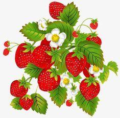 딸기,딸기 꽃,흰색,과일 Strawberry Flower, Fruit, Flowers, Pasta, Patterns, Tattoos, Design, Placemat, Block Prints