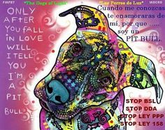 Only after you fall in love will I tell you I am Pit Bull.