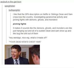"Netflix describes Supernatural // ugh the last line... ""Your dead mom's chest hair!"" made me crack up!"