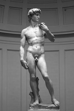 Michaelangelo's David, Florence, Accademia.    So magnificent. Could have studied it all day.
