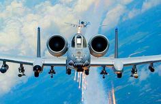 """The mean look of an A-10 Thunderbolt """"Warthog""""."""