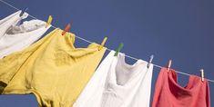 Come rimuovere la muffa dai tessuti | greenMe.it | Bloglovin'