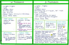 My Notes for USMLE - THALASSEMIAS