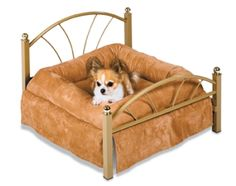 Best representation descriptions: Luxury Pet Beds for Small Dogs Related searches: Dog Bed,Cat Bed,Cartoon Pet Bed,DIY Pet Beds,Luxury Pet . Dog Beds For Small Dogs, Cool Dog Beds, Doggie Beds, Tiny Dog, Cat Beds, Pink Dog Beds, Luxury Pet Beds, Luxury Bed, Orthopedic Dog Bed