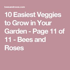 10 Easiest Veggies to Grow in Your Garden - Page 11 of 11 - Bees and Roses