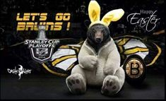 Hockey Teams, Hockey Stuff, Stanley Cup Playoffs, Boston Bruins, Easter Bunny, Happy Easter, Nhl, Funny, Sports