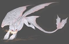 Httyd Dragons, Cute Dragons, Manga Dragon, Dragon Art, Mythical Creatures Art, Fantasy Creatures, Night Fury Dragon, Dragon Sketch, Monster Drawing