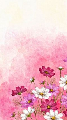 New wallpaper iphone watercolor pink ideas Flower Background Images, Flower Backgrounds, Flower Wallpaper, Wallpaper Backgrounds, Painting Wallpaper, Phone Backgrounds, Cellphone Wallpaper, Iphone Wallpaper, Watercolor Flowers