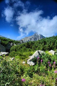 High Tatras, Slovakia High Tatras, Jar, Spring, Places, Beautiful, Jars, Glass, Lugares