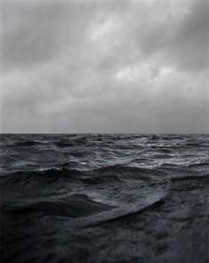 """What would an ocean be without a monster lurking in the dark? It would be like sleep without dreams."" - Werner Herzog"