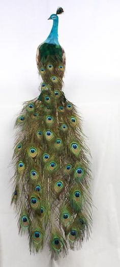 87f178b3314 Closed Tail Feathered Artificial Peacock - Birds and Butterflies Sale -  Sales