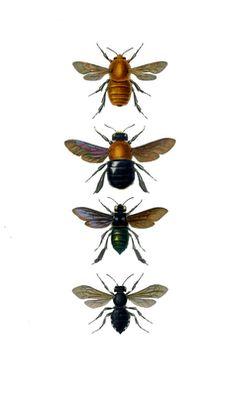 The Vintage Moth - Todays Creative Blog
