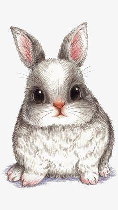萌 兔 彩 铅 conejos bunny drawing, rabbit drawing и draw Bunny Drawing, Bunny Art, Bunny Pics, Big Bunny, Hunny Bunny, Lapin Art, Baby Animals, Cute Animals, Cute Cartoon Animals