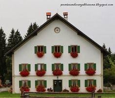 European Flower Window Boxes!