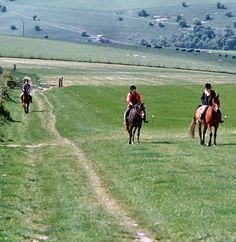 Horseriders on the South Downs Way
