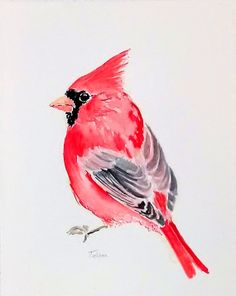 Northern Cardinal original miniature by TatianasArtStudio on Etsy, $30.00