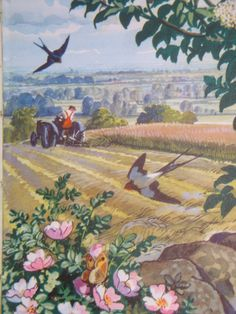 An illustration by C F Tunnicliffe from my favourite vintage Ladybird book 'What To Look For In Summer' Comic Pictures, Vintage Pictures, Art And Illustration, Bird Poems, Ladybird Books, British Wildlife, Bird Art, Natural History, Vintage Art